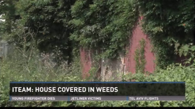 Day after investigation, overgrown property cleared - WHAS 11.com (subscription) | Itspossible Marketing Ltd | Scoop.it