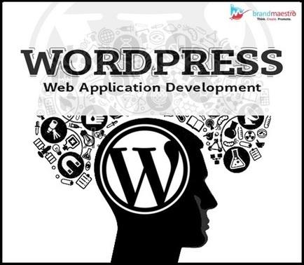 Why & How to Use WordPress for Custom Web App Development? | Latest Tips on Web Design & Development | Scoop.it