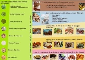 4 ebooks de recettes à l'avoine, spécial santé | Street food : la cuisine du monde de la rue | Scoop.it