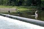 Robert Street dam removal this summer could aid Raritan River fish migration ... - NJ.com   Fish Habitat   Scoop.it