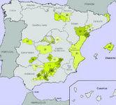 DO Denominación de origen de aceite de oliva | Aceite de Oliva | Noticias DENOMINACIONES DE ORIGEN DE ESPAÑA | Scoop.it