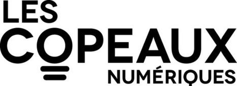 L'association | Les Copeaux Numériques | Coopération, libre et innovation sociale ouverte | Scoop.it