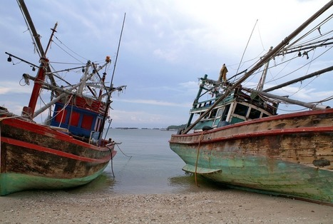 Fishing industry in murky waters | Aquaculture Directory | Scoop.it