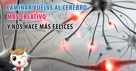 Caminar vuelve al cerebro más creativo y le cura las penas | Salud y Deporte | Scoop.it