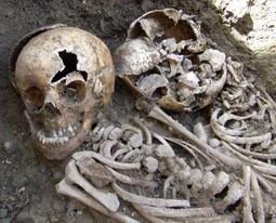 The Kilkenny Workhouse mass burials: an archaeology of the Irish Potato Famine | Heathers Scoop | Scoop.it