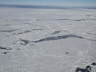 Descubren en la Antártida el núcleo de hielo más antiguo del mundo :: El Informador | Noticias CTM (tercera evaluación) | Scoop.it