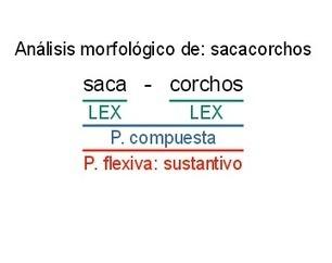 I Práctica de Análisis Morfológico. Soluciones (5/10) | Sobre la Gramática | Scoop.it