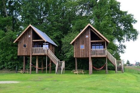 Treecabins Camping Koeksebelt - Architectenweb | Duurzame locaties | Scoop.it