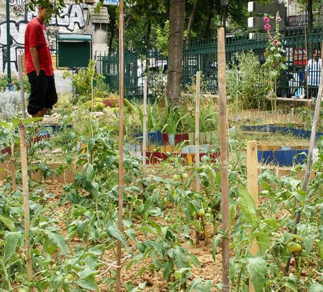 Une oasis urbaine pour sans domicile fixe | Changer la société pour éliminer la pauvreté | Scoop.it
