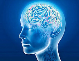 The Combination of Aricept and Namenda Helps Slow the Rate of Decline in Dementia Patients