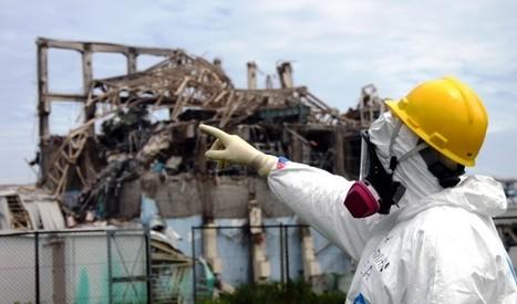 La radioactivité peut tuer à faibles doses | Nucleaire | Scoop.it