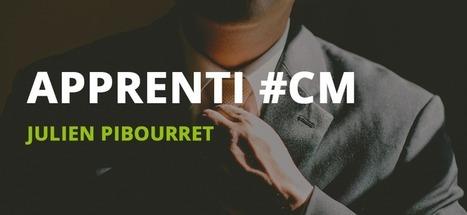 La vie d'apprenti Community Manager - Julien Pibourret | Formation Community Manager | Scoop.it