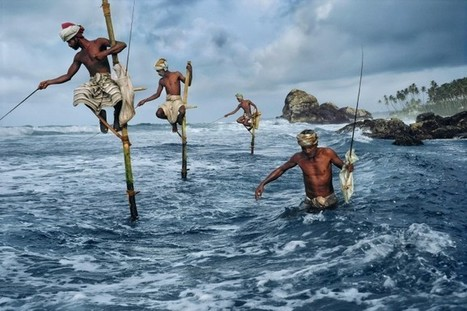 Last Week In Photography History: The Birth of Steve McCurry | Nature | Scoop.it