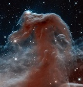 NASA's Hubble sees a horsehead of a different color - Astronomy Magazine | Astronomy News | Scoop.it