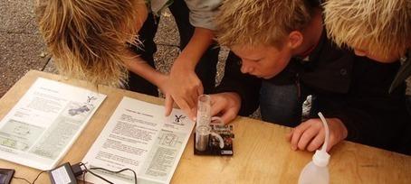 Undervisningsmaterialer til udskoling | Naturfag links, Kongerslev | Scoop.it