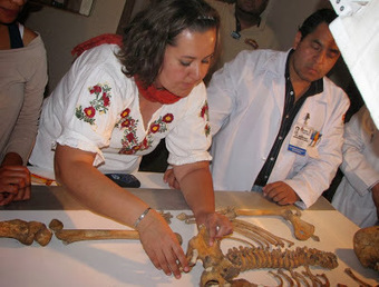 Forensic study of Mixtec woman reveals life of pain and hard work   The Archaeology News Network   Kiosque du monde : Amériques   Scoop.it