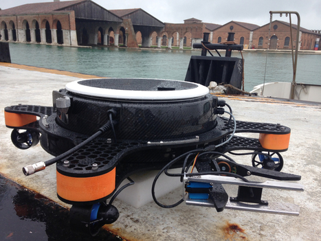 Fish and ships: artificial lily pads and mussels monitor Europe's waters | Robohub | Aquaculture Directory | Scoop.it