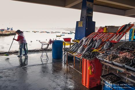 Voyage au Pérou autour de sa gastronomie | MILLESIMES 62 : blog de Sandrine et Stéphane SAVORGNAN | Scoop.it