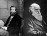¿Quién descubrió antes la evolución, Wallace o Darwin? | Banco de Aulas | Scoop.it