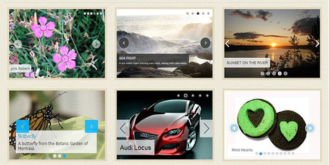 Best Free Wordpress Slider Plugin For your Site - Wpdil | wordpress news,themes & tutorial | Scoop.it