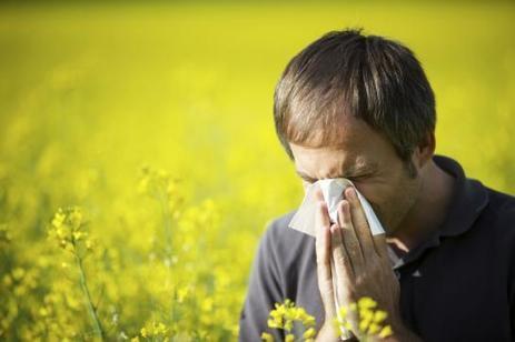 Prévenir et guérir les allergies saisonnières | Neo News Santé | Scoop.it