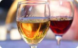 Qu'est-ce qu'un vin muté ?   Le Cognac et son vignoble   Scoop.it