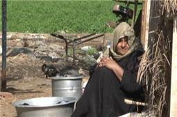 Egypt island residents forcibly evicted | Égypt-actus | Scoop.it