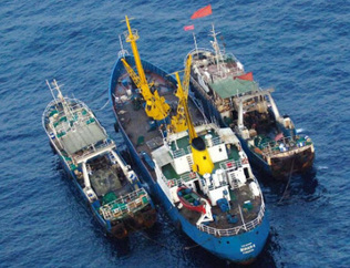 Commission adopts IUU vessels list | Fisheries & Fishing Technology | Scoop.it