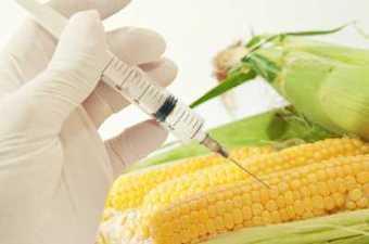 USA : Monsanto fait payer des amendes aux agriculteurs bio | Business | Scoop.it