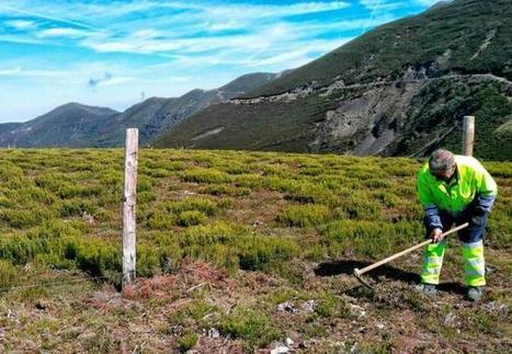 Dan comienzo las primeras excavaciones en la vertiente leonesa de la Carisa | LVDVS CHIRONIS 3.0 | Scoop.it