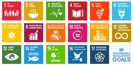 Sustainable Development Goals (SDGs) :: United Nations | On education | Scoop.it
