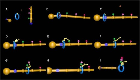Molecular Robots: Making molecules that make molecules | Amazing Science | Scoop.it