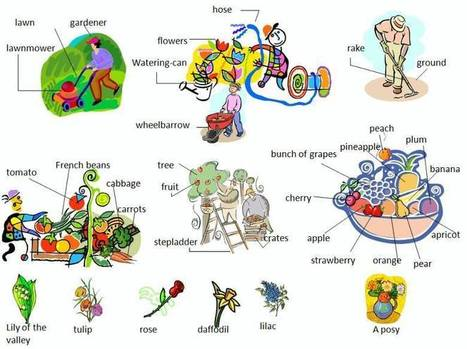 Garden or yard vocabulary with pictures learning English | maestra | Scoop.it