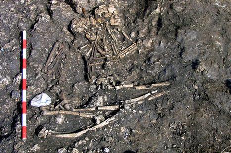 Las comunidades neolíticas seguían juntas después de la muerte | Arqueología, Historia Antigua y Medieval - Archeology, Ancient and Medieval History byTerrae Antiqvae (Blogs) | Scoop.it