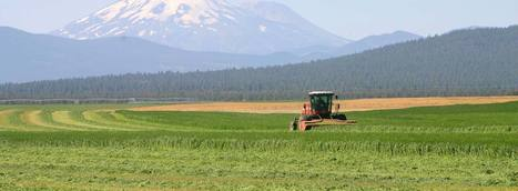 Western Alfalfa & Forage Symposium | food security and climate change | Scoop.it