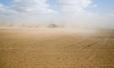 Peak soil: industrial civilisation is on the verge of eating itself | New paradigm | Scoop.it