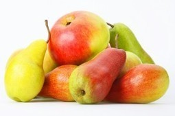 FreshFruitPortal.com » South African apples and pears shine on European market | Fruits & légumes à l'international | Scoop.it