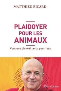 Conférence exceptionnelle de Matthieu Ricard - vendredi 7 nov. - Lyon | La pleine Conscience | Scoop.it