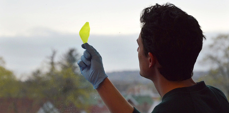 Crean la primera hoja sintética que convierte agua y luz en oxígeno   Transición   Scoop.it