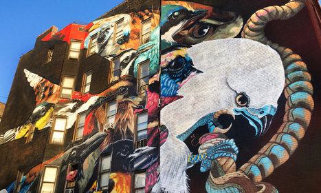 Street Artists and Muralists to Paint All 314 Threatened North American Birds | Interesting Reading | Scoop.it
