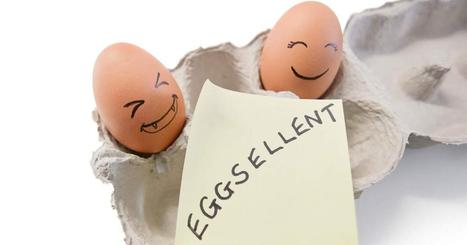 Where and How to Find High-Quality Organic Eggs   Sustainable Farming   Scoop.it