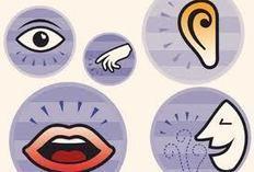 Les systèmes de décision pour la communication et le marketing : les contradictions entre gains ou pertes probables. : La Communauté des E-Marketeurs Réseau social des spécialistes du Webmarketing ... | La Communauté des E-Marketeurs et des spécialistes du Webmarketing | Scoop.it