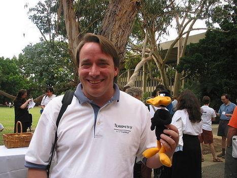 Linux cumple 25 años: cómo comenzó todo   Crowdsourcing   Scoop.it