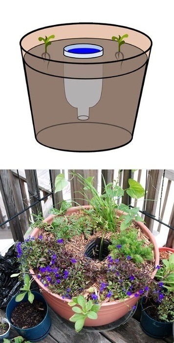 101 Gardening: Planter Water Reservoir | Backyard Gardening | Scoop.it