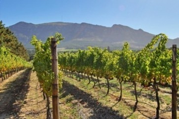 South Africa's Constantia Uitsig on sale for £11m | Vitabella Wine Daily Gossip | Scoop.it