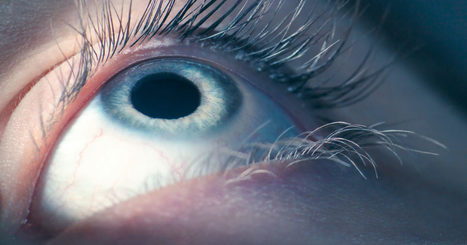 Google's AI Reads Retinas to Prevent Blindness in Diabetics | Healthy lifestyle | Scoop.it