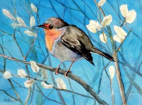 Turismo ornitológico 'cinco estrellas' en Abuela María - Lanza Digital | Casa NIDO - HOUSE NEST | Scoop.it