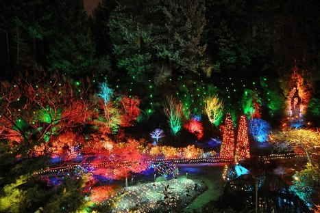 Christmas at The Butchart Gardens | Gardening Life | Scoop.it