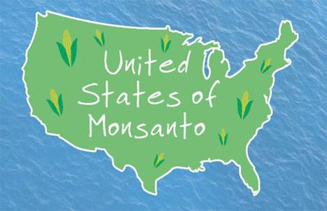 Agriculture And Biotech Giant Monsanto Controls America? - | Questions de développement ... | Scoop.it