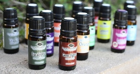 Much Needed Guidelines to Keep You Away from Procuring Fabricated Oils | Natures Natural India - Bulk Essential oils Manufacturer and Suppliers | Scoop.it